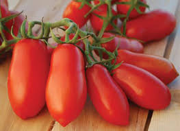 Best Tomatoes for Pizza